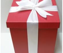 Cadeau pour le Jour de la Saint-Valentin