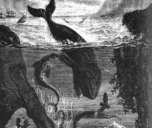 Jules Verne: le Saint-Michel I