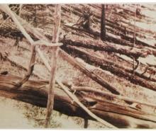 Évènement de Toungouska en 1908:  hypothèses de l'explosion