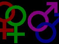 Loi sur le mariage civil Canada 2005